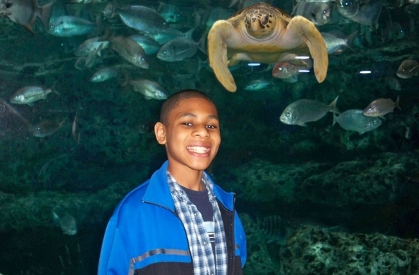 Spring Break Family Activities Midwest: Sea Life Kansas City Aquarium