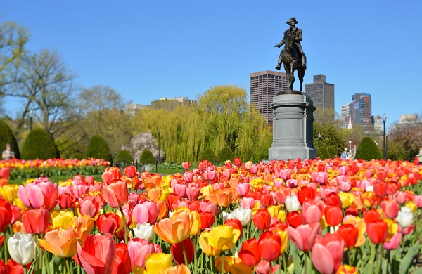 Five Ways To Immerse Yourself In Boston #boston #bostontravel