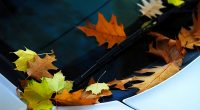 Fall Car Care: 10 Essential Tips to Keep Your Family's Car Up and Running
