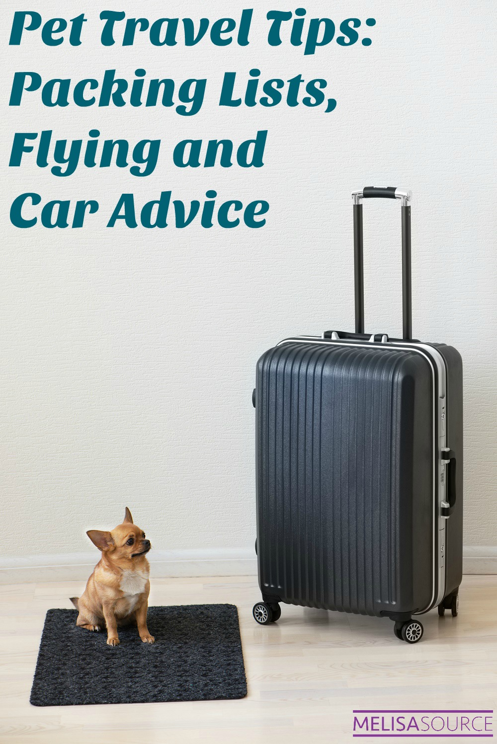 Pet Travel Tips: Packing Lists, Flying and Car Advice