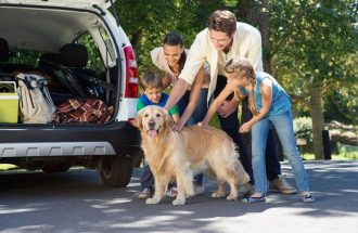 Expert Amy Goodman: Pet Travel Tips: Packing Lists, Flying and Car Advice