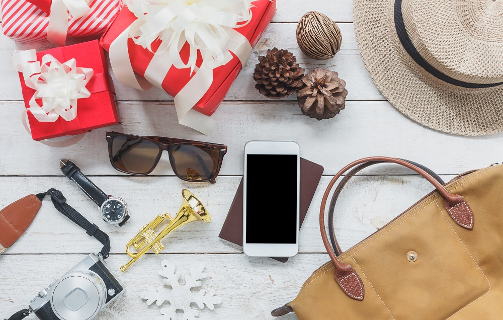 Your Holiday Travel Survival Guide