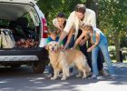 This Is How To Make Your Next Family Trip Fun, Memorable And Stress-Free