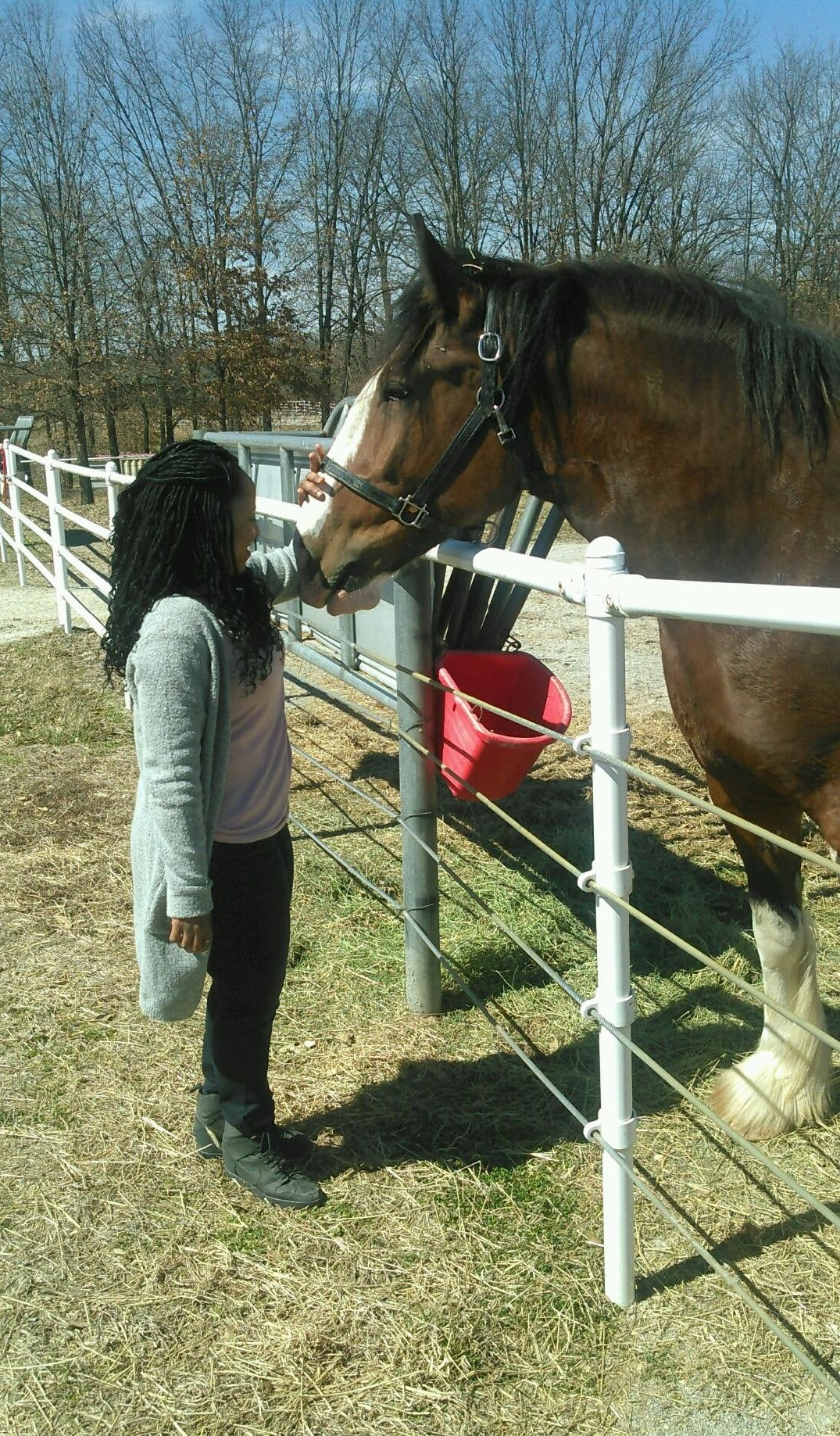 Warm Springs Ranch Home of Budweiser Clydesdales family tour review makeba giles faith health and home faithhealthandhome